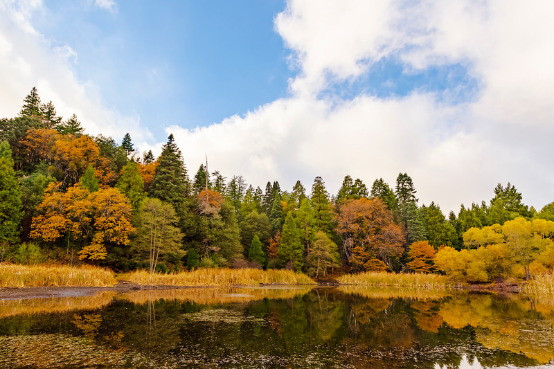 Nice Autumn Colors Reflecting on Doane Pond in Palomar Mountain State Park