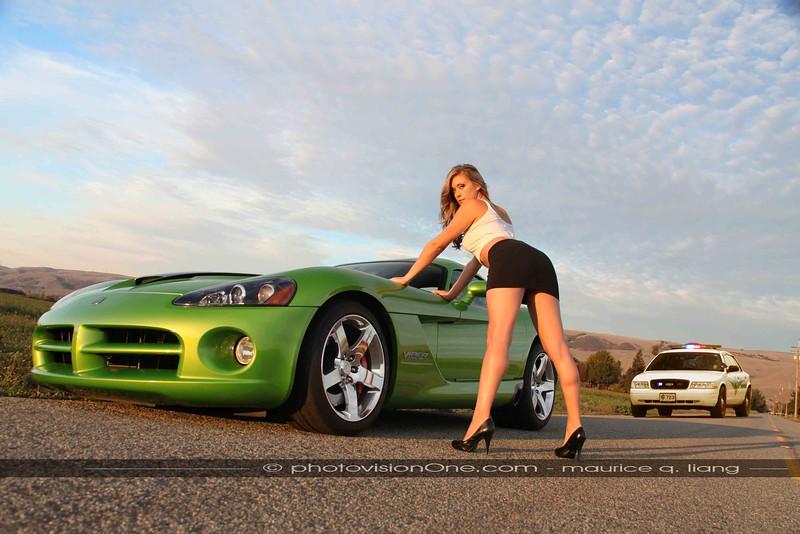 Busted.  2008 Viper SRT10.  Model: Crystal