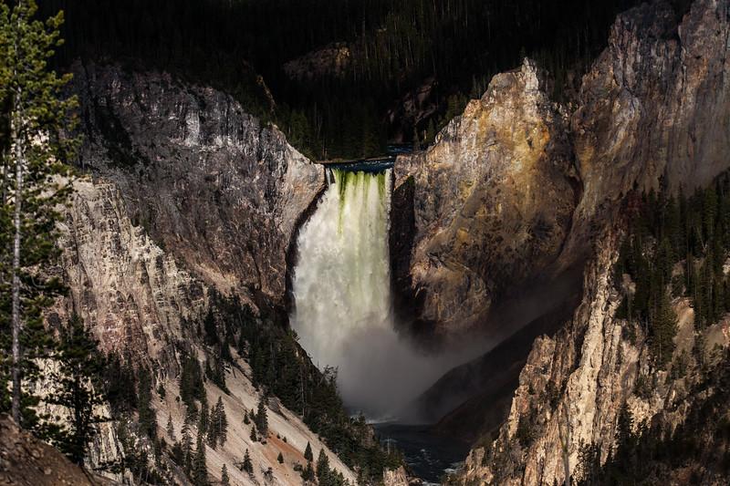 Yellowstone Misc-58.jpg