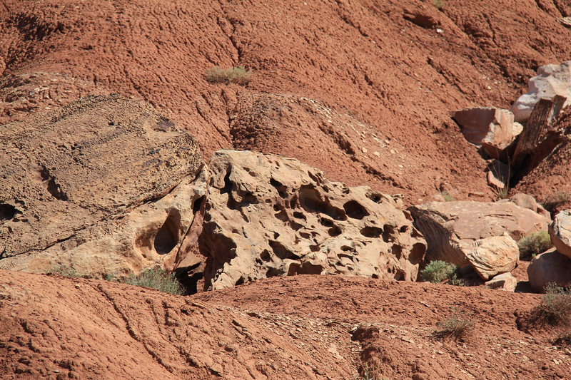 20170618-075 - Capitol Reef National Park - Scenic Drive.JPG