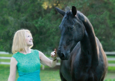 Portraits of Horses and their Humans