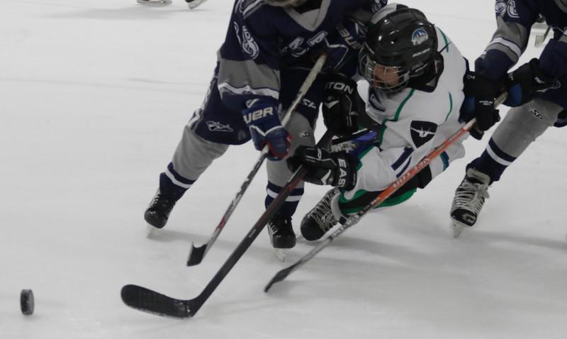 JPM127-Flyers-vs-Rampage-9-26-15.jpg