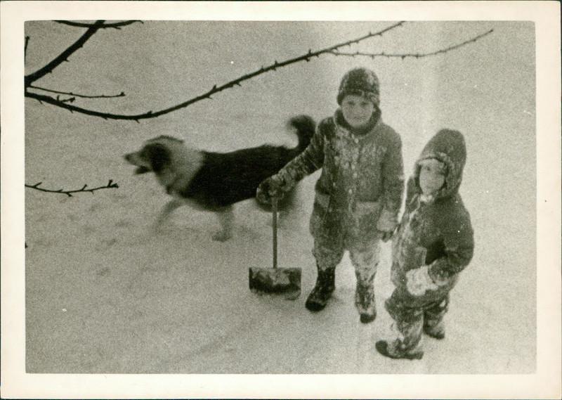 1963_George_E53-01.jpg