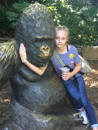 Zoo ATL: 7th Grade 2016