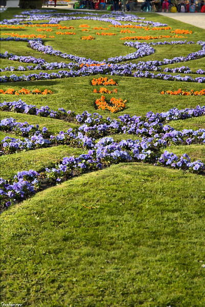 Mirabelle Gardens, Salzburg, 04/02/2019 This work is licensed under a Creative Commons Attribution- NonCommercial 4.0 International License