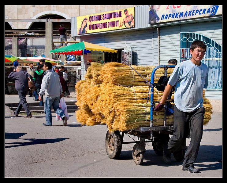 3063_Bishkek_v3.jpg