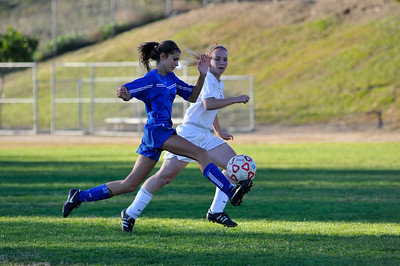 RBHS_JV_Soccer_2010