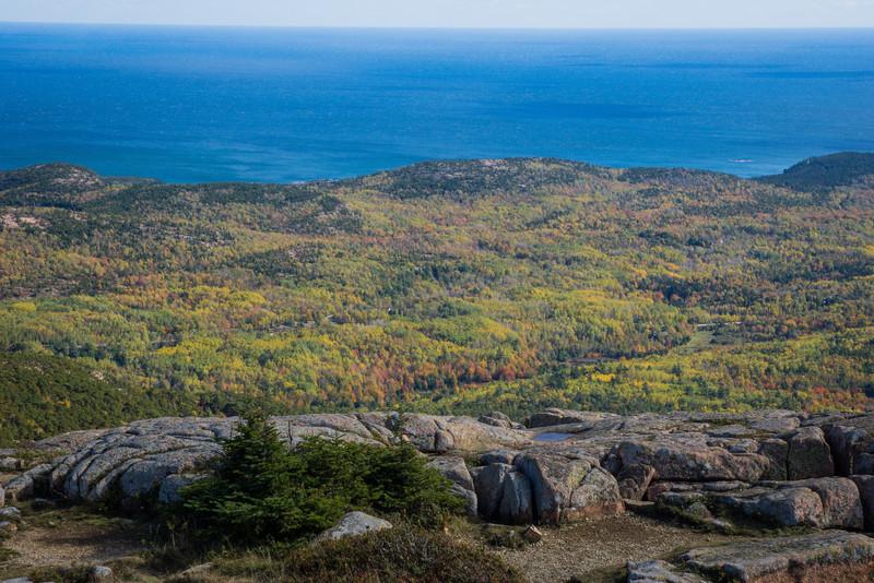 20121011-Acadia-06613.jpg