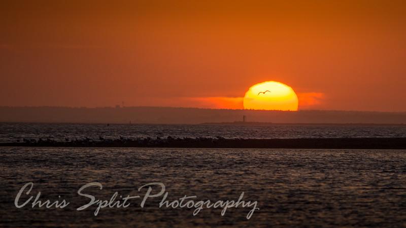 sunset feb 17 2017 (1 of 1).jpg