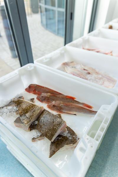 Retail Fish Market