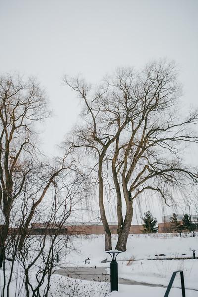 AVS_EcoPreserve_Winter2021-7.jpg