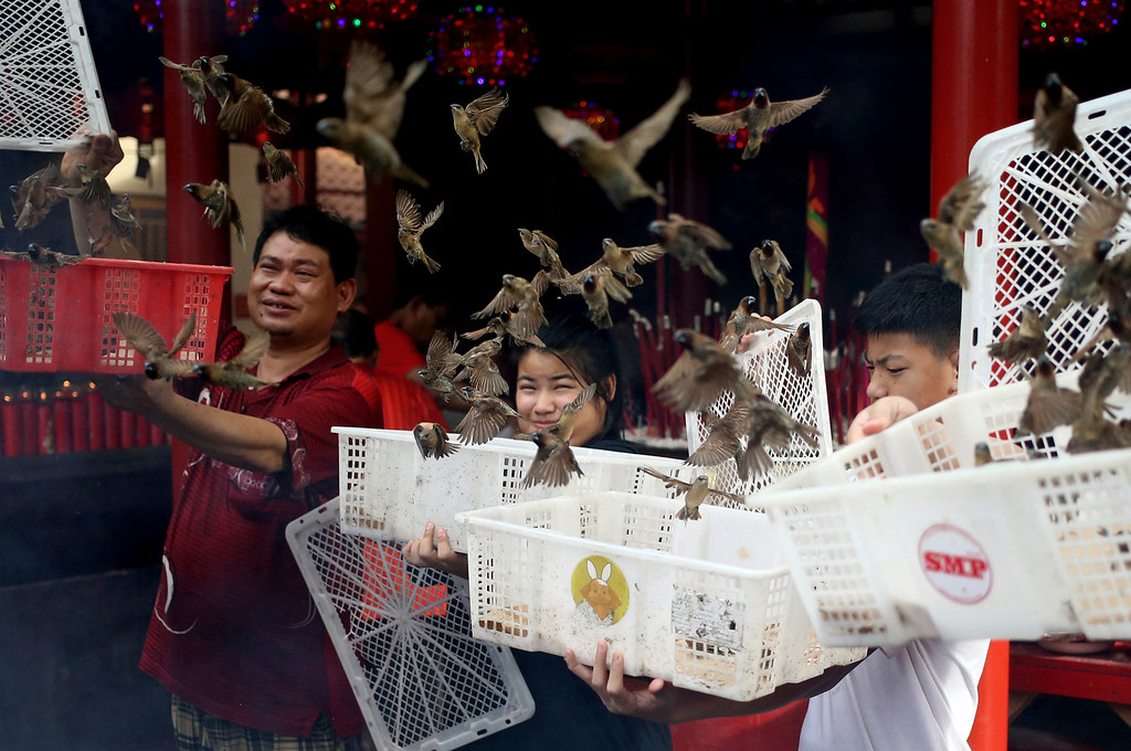 . In this Friday, Feb. 16, 2018, file photo, Indonesian ethnic Chinese release birds which is believed to bring good luck during Lunar New Year celebrations at a temple in the China Town in Jakarta, Indonesia. (AP Photo/Dita Alangkara)