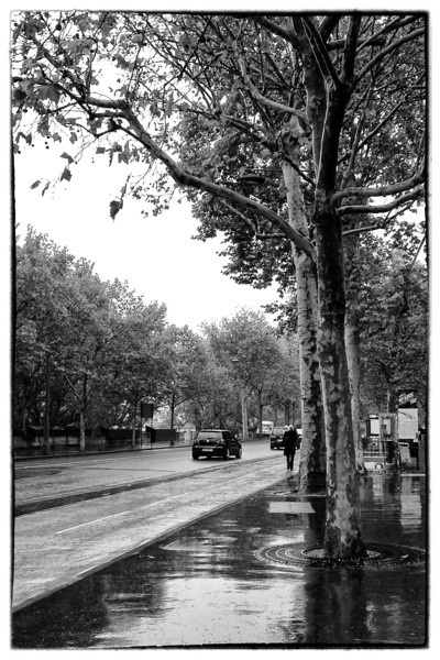 Paris B&W rain street 9037.jpg