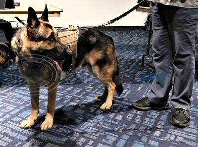Tyler Public Library Hosts Service Dogs' Program by Sandra Boynton