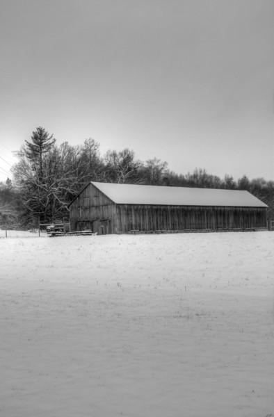 Easy Pickins Winter 001-1676781197-O.jpg