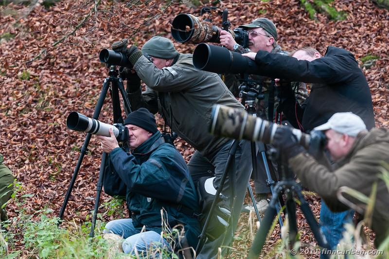 Fuglefotografer - Bird photographers