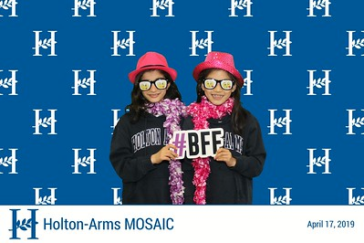 Holton-Arms MOSAIC 2019