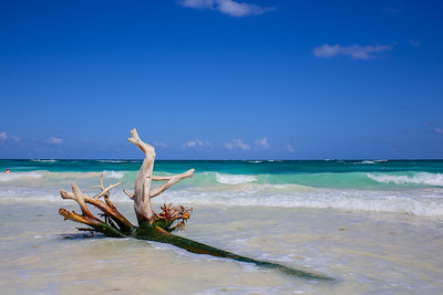 Rhoades - Cancun & Tulum April 2017