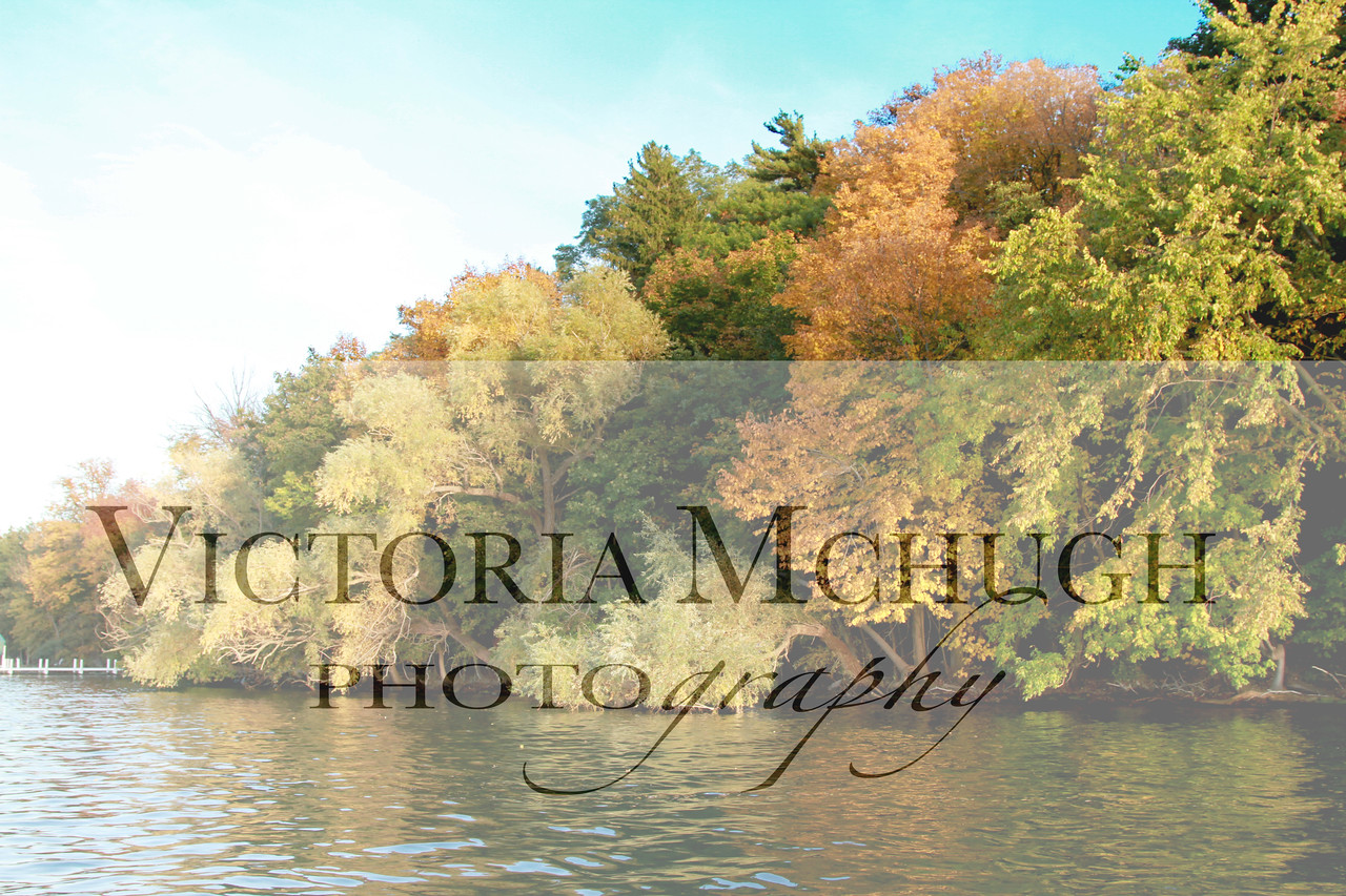 11 10 Fall shoreline (28) 1-