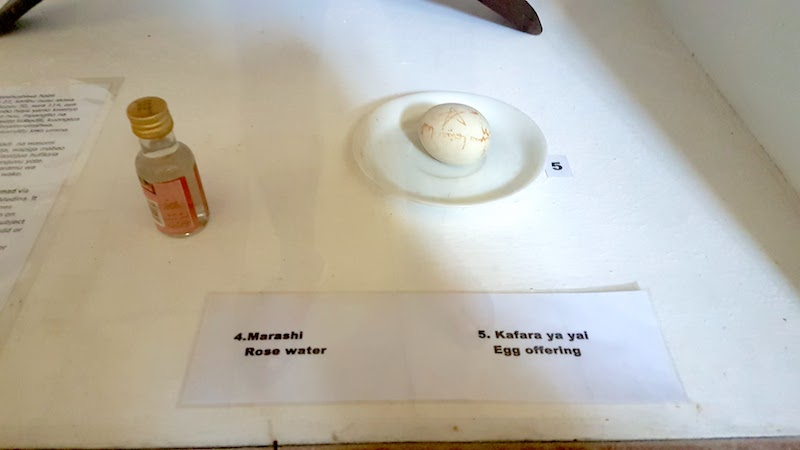 Worst Museum in the World - egg display