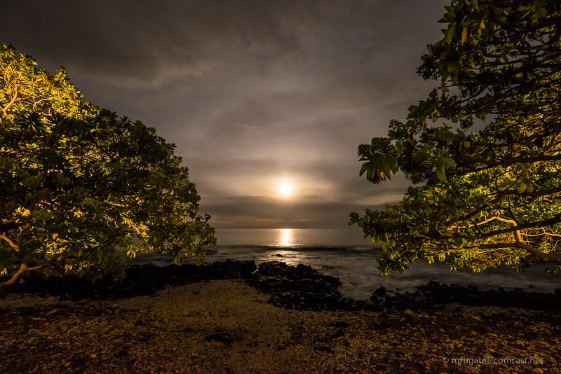 Maui Moon