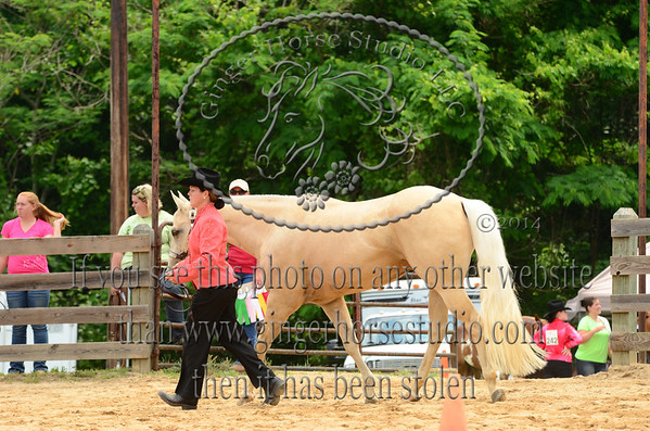 Piedmont Pot O Gold Classic Horse Show June 7, 2014