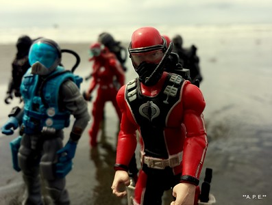 COBRA DIVERS IN THE SURF