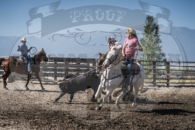 Last Chance Benefit Team Roping (Haines, OR)