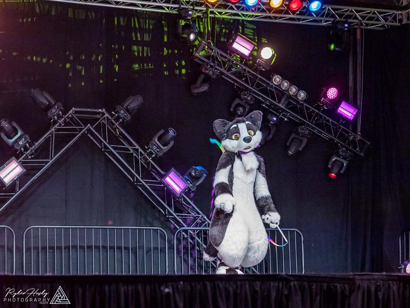 MFF 2018 Dance Comp-1203.jpg