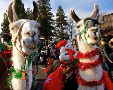 Sisters Christmas Parade & Christmas Tree Lighting 2018