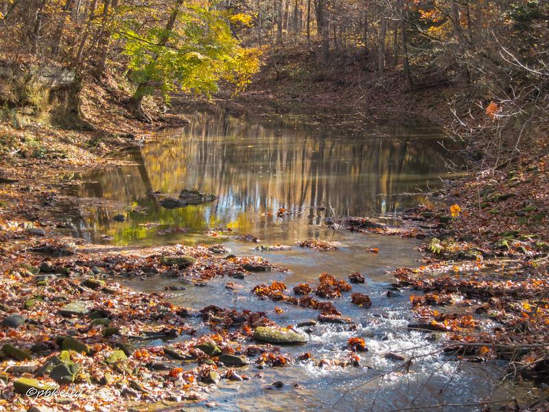Black River 110516-2.jpg