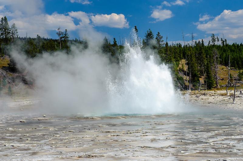 20130816-18 Yellowstone 156.jpg