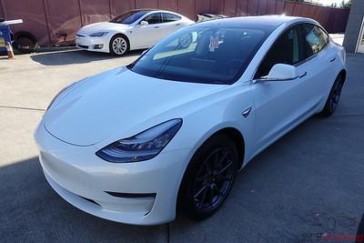 Tesla Model 3 - Pearl White Multi-Coat