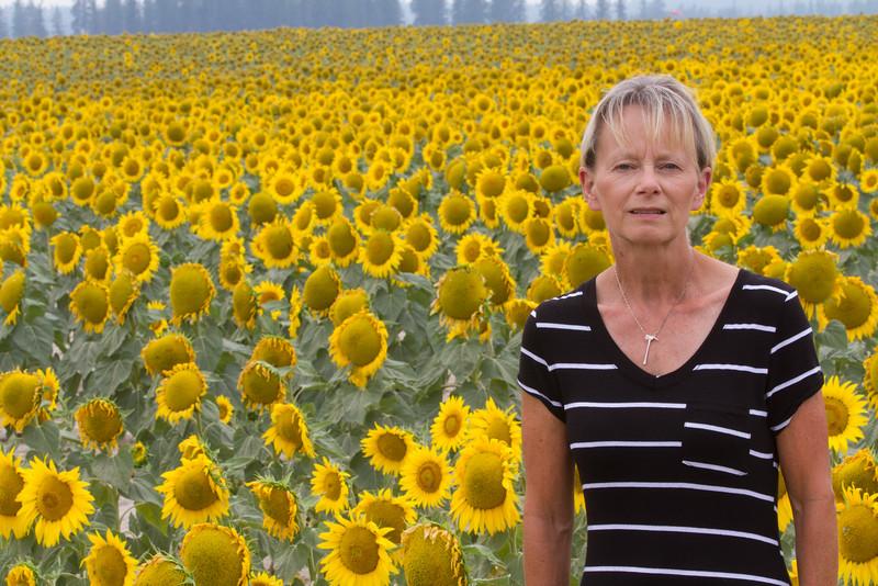 sun flowers-3891.jpg