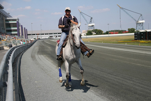 Race Track working horse and rider