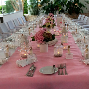 28115 Table runner baby pink