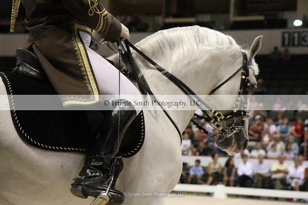 The World Famous Lipizzaner Stallions - 2011