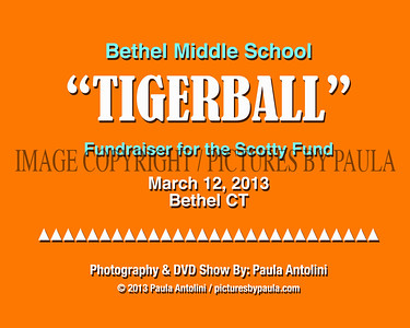 Bethel Middle School TIGERBALL ~ Fundraiser for the Scotty Fund ~ Bethel, CT March 12, 2013