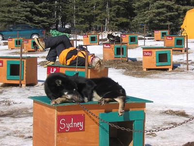 Alaska March 2010