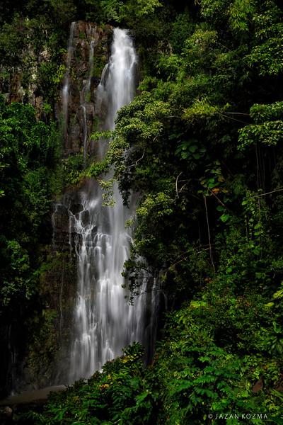 Maui - The Hawaiian Landscape