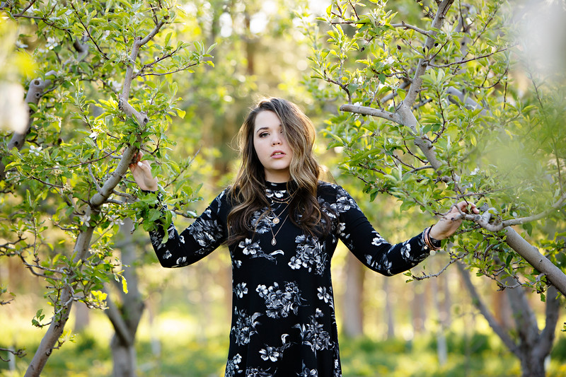 Orchard Session