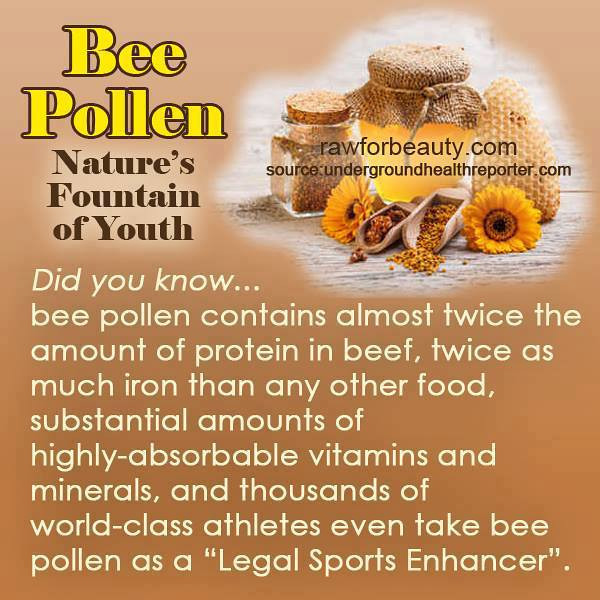 BEE POLLEN … NATURE'S FOUNTAIN OF YOUTH.jpg