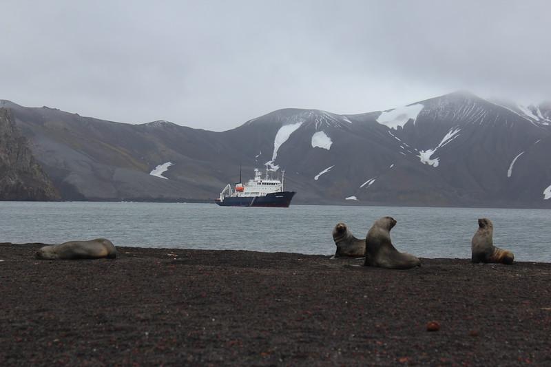 Antarctica 082.JPG