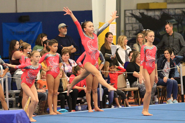 Fusion Gymnastics