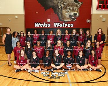 2018 - 2019  Weiss Volleyball
