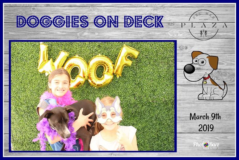 Doggys on Deck44.jpg