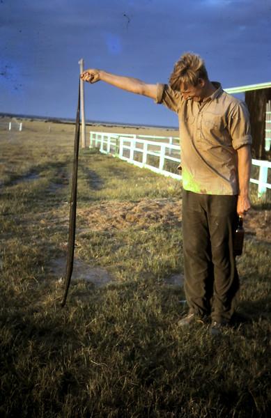 1965-11-3 (4) Snake under clothesline.JPG