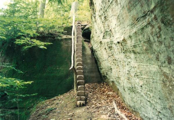 Wilderness Camp 1990-1991