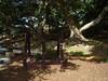 open plan tent cubby