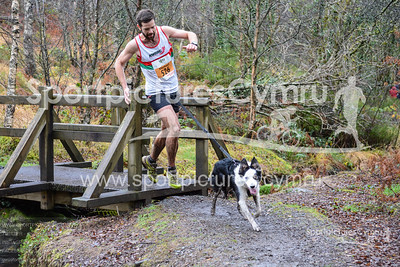 Betws y Coed Trail Challenge - Canicross at Bridge at 4.6kM